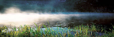 Wetlands Photograph - Morning Fog Acadia National Park Me Usa by Panoramic Images