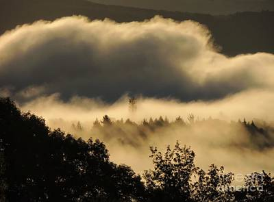 Photograph - Morning Fog  by Marcia Lee Jones