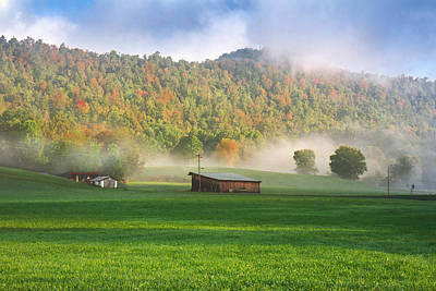 Photograph - Morning Fog by Mary Almond
