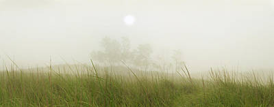 Photograph - Morning Fog On The Dunes by Owen Weber