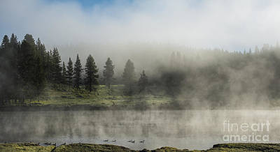 Photograph - Morning Fog On The Yellowstone by Sandra Bronstein