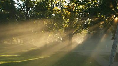 Morning Fog Original