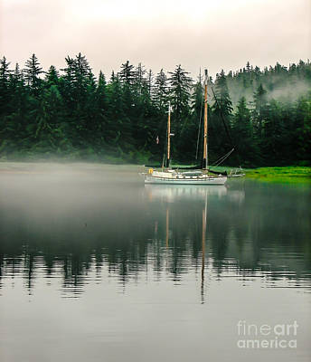 Photograph - Morning Fog by Robert Bales