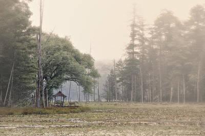 Photograph - Morning Fog by Steven Mancinelli