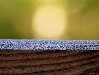 Photograph - Morning Frost Abstract by Maria Urso