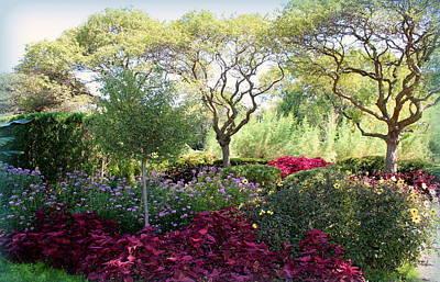 Morning Garden Dreams Original by Rosanne Jordan