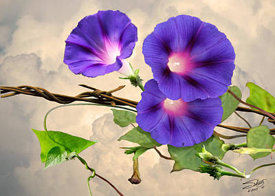 Barbed Wire Fences Digital Art - Morning Glory And Barbed Wire by IM Spadecaller