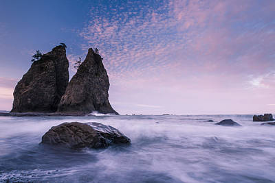 Photograph - Morning Glory by Dan Mihai
