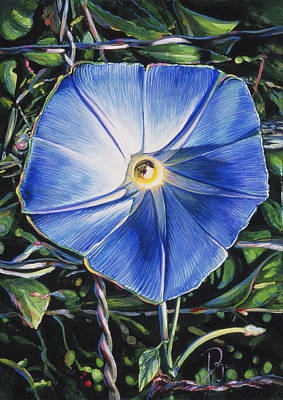 Painting - Morning Glory by Donna Page