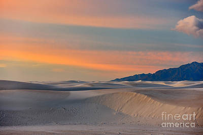 Photograph - Morning Glory In White Sands by Sandra Bronstein