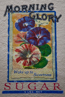 Outerspace Patenets Royalty Free Images - Morning Glory Sugar Sack Royalty-Free Image by David Patterson