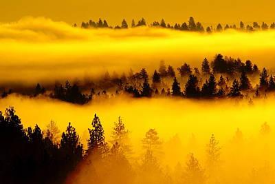 Photograph - Morning Glow by Ben Upham III