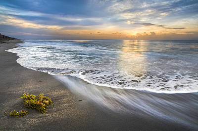 Delray Photograph - Morning Glow by Debra and Dave Vanderlaan