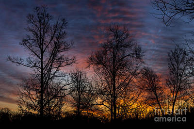 Photograph - Morning Glow by Debra K Roberts