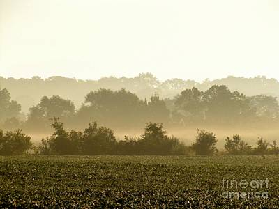 Photograph - Morning Greys I by Marilyn Smith