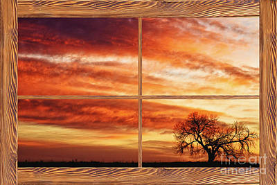 Morning Has Broken Barn Wood Picture Window View Print by James BO  Insogna