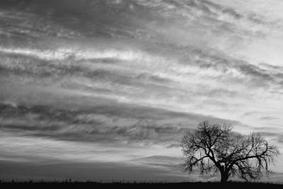 Morning Has Broken Like The First Dawning Landscape Bw Print by James BO  Insogna
