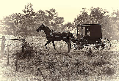 Amish Photograph - Morning In Amish Country by Marcia Colelli
