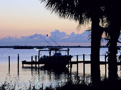 Photograph - Morning In Florida by Ira Runyan