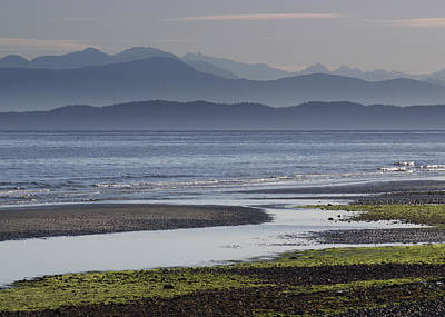 Photograph - Morning In Qualicum Beach by Randy Hall