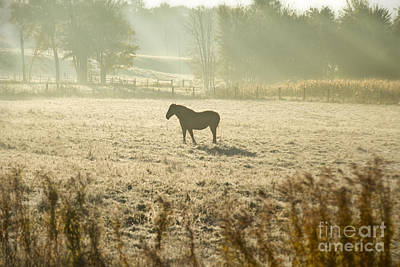 Featured Tapestry Designs - Morning in the Frosty Field by David Arment