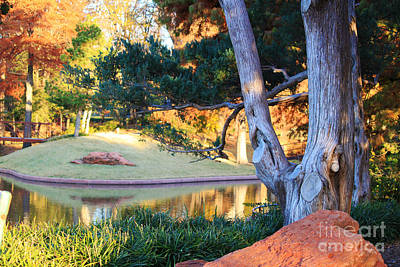 Morning In The Park Art Print