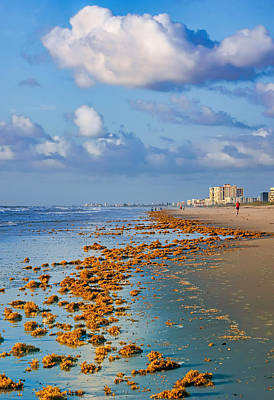 Photograph - Morning Light #1 - Cocoa Beach - Florida by Nikolyn McDonald