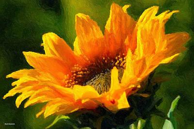 Digital Art - Morning Light by Chuck Mountain