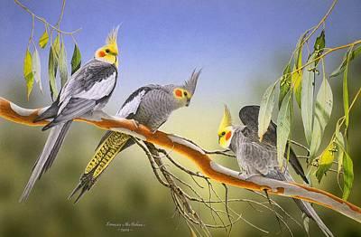 Morning Light - Cockatiels Art Print