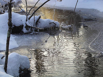 Photograph - Morning Light Draws A Mist From The Frigid Stream by Terrance DePietro
