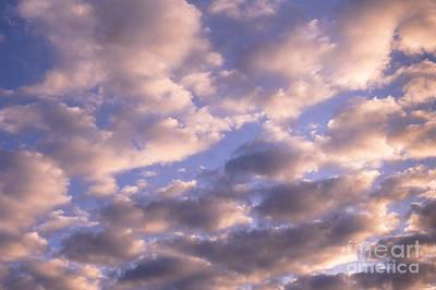 Photograph - Morning Light by Jim Corwin