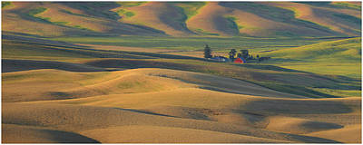Contour Farming Photograph - Morning Light by Latah Trail Foundation