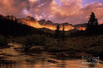Photograph - Morning Light Maligne Pass by Bob Christopher