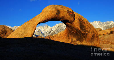 Photograph - Morning Light Mobius Arch by Bob Christopher