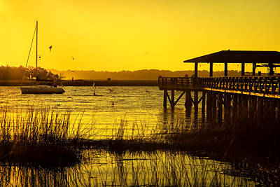 Morning Light On Isle Of Hope Art Print by Diana Powell