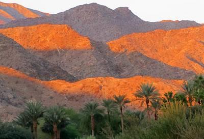 Photograph - Morning Light Over The Desert by Lisa Dunn