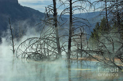 Morning Mist At Mammoth Hot Springs Print by Sandra Bronstein