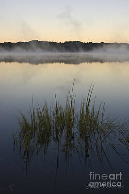 Photograph - Morning Mist At Sunrise by David Gordon