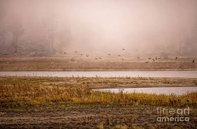 Photograph - Morning Mist At The Lake by Peggy Hughes