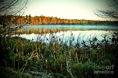 Photograph - Morning Mist On Autumn Pond by Desiree Paquette