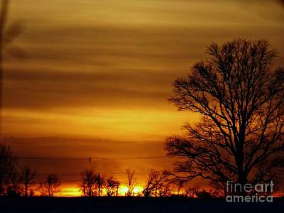 Photograph - Morning Mist Paths by Scott B Bennett
