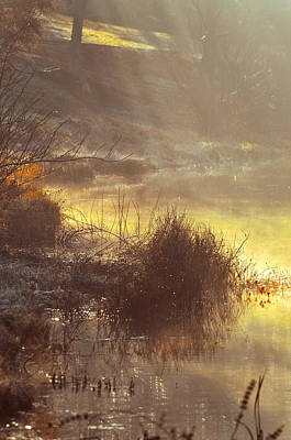 Photograph - Morning Misty Rays by Julie Palencia