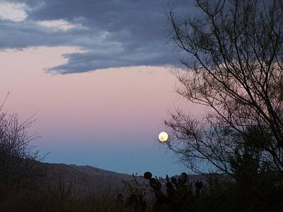 Photograph - Morning Moon by Christine Drake