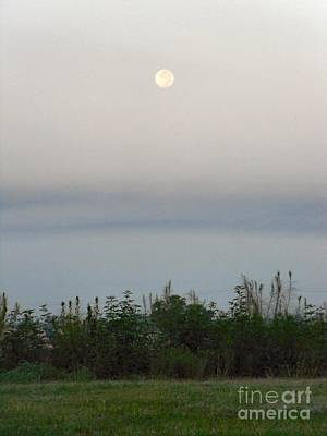 Photograph - Morning Moon Rise by Audrey Van Tassell