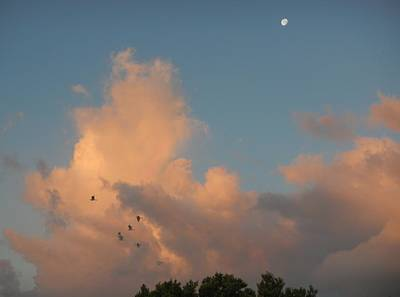 Photograph - Morning Moon by Susan Sidorski