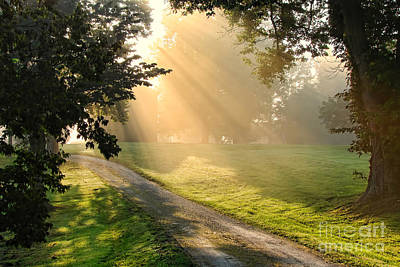 Photograph - Morning On Country Road by Olivier Le Queinec