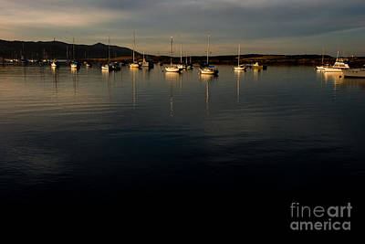 Art Print featuring the photograph Morning On The Bay by Terry Garvin