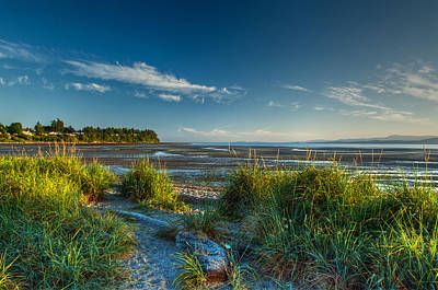 Photograph - Morning On The Beach by Randy Hall