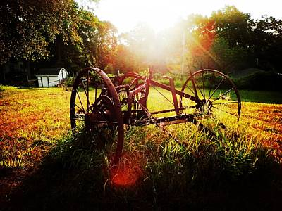 Photograph - Morning On The Farm by Zinvolle Art