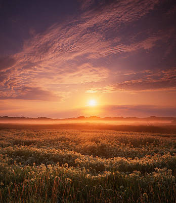 Morning On The Fen Art Print by Ray Mathis